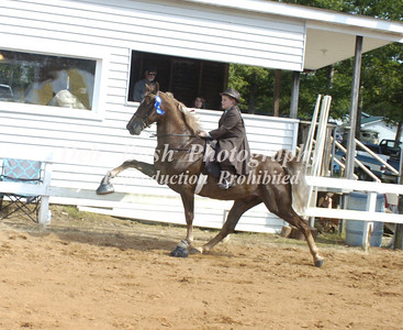 CLASS 9  YOUTH WALKING HORSE SPEC  17  &  UNDER