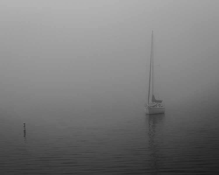 Foggy Morning in Port Towsend