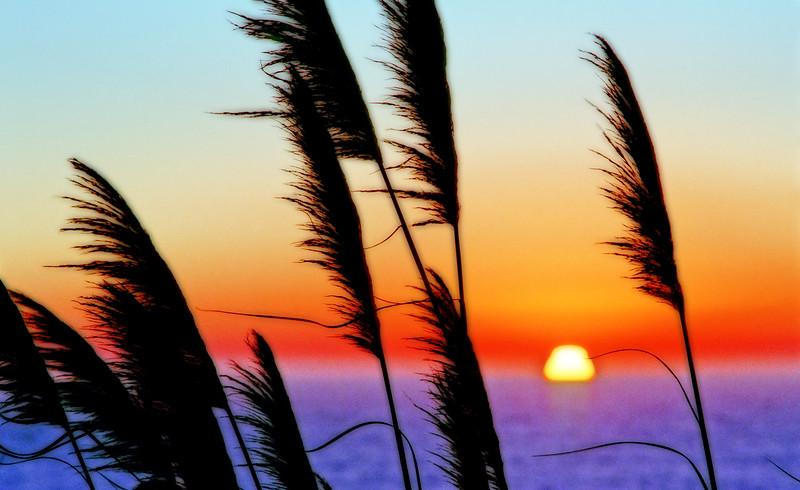 Last Light* Laguna Beach, sunset, sun