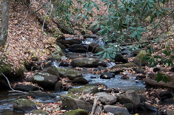 2012.11.11 Amicalola Falls, Georgia