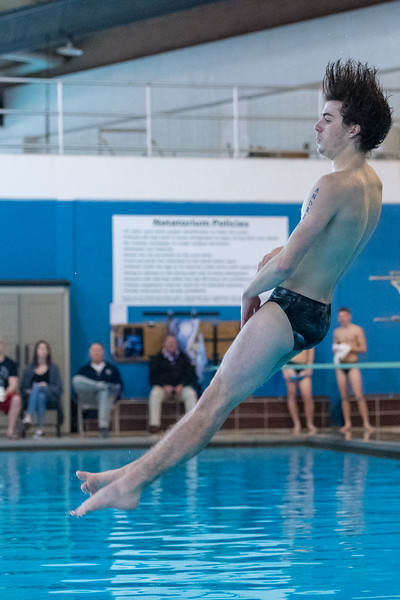 2018_KSMetz_Jan17_SHS Swimming Manhattan_NIKON D5_0968.jpg