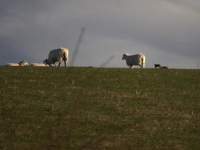 UK08- English Countryside