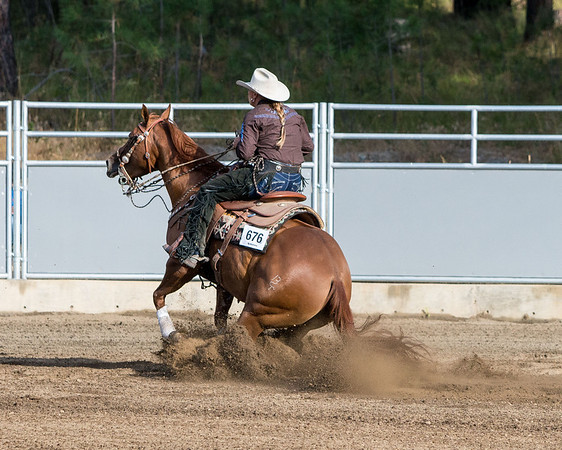 Reining Cow Horse comp 8 2013