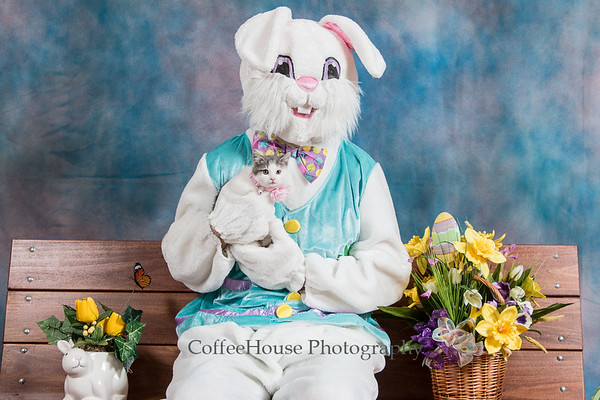 Easter Bunny & Pets 2017