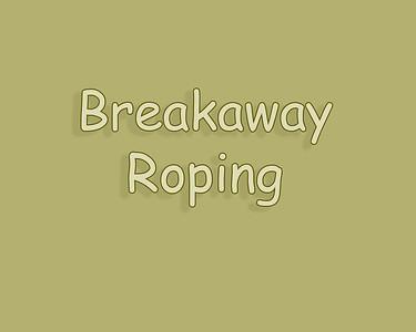 WOS 2018 Breakaway Roping
