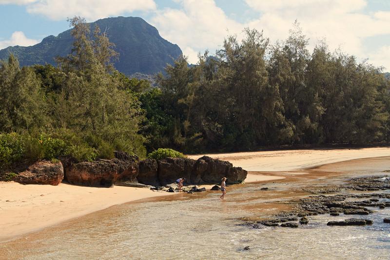 Hawaii902.jpg
