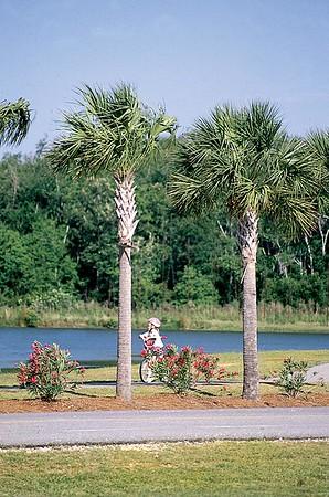 James Island County Park 2002-2006