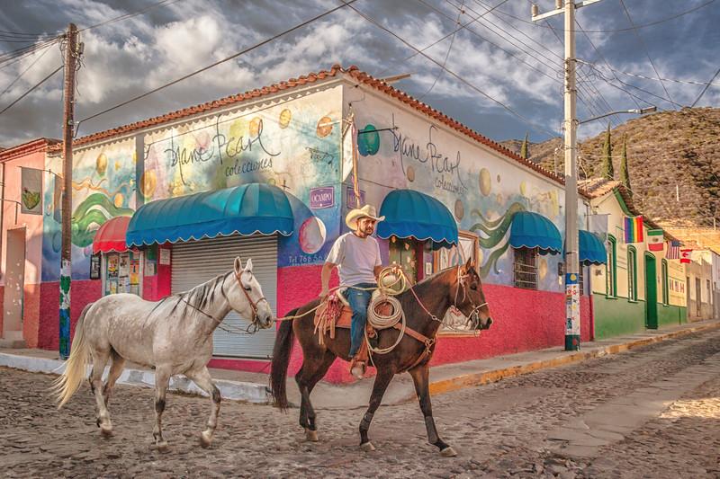streethorses.jpg