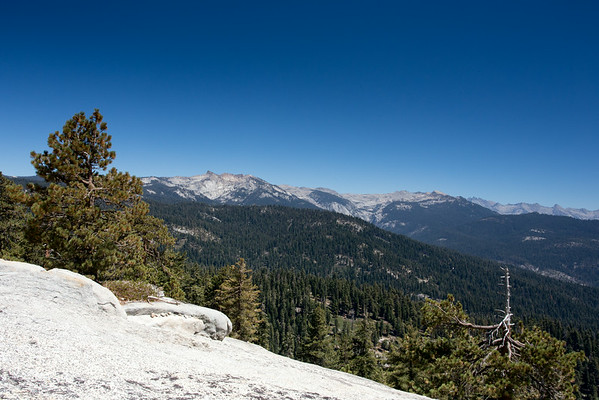 Sequoia National Park - Little Baldy Trail - Aug 2014