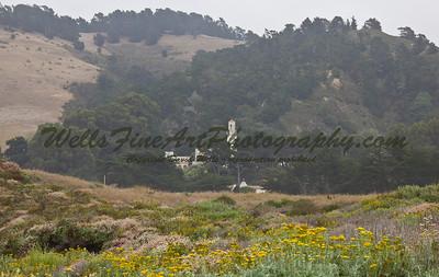 Point Lobos & Carmel