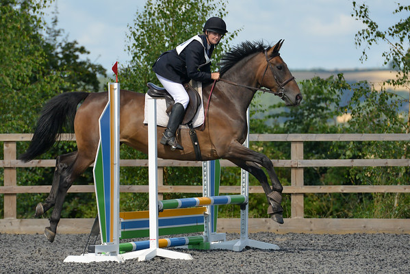 Show Jumping (60cm)