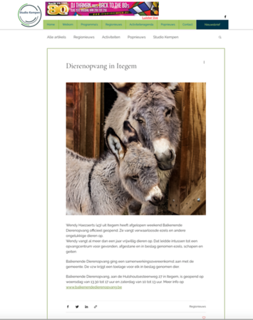 Miniature Donkey Publications