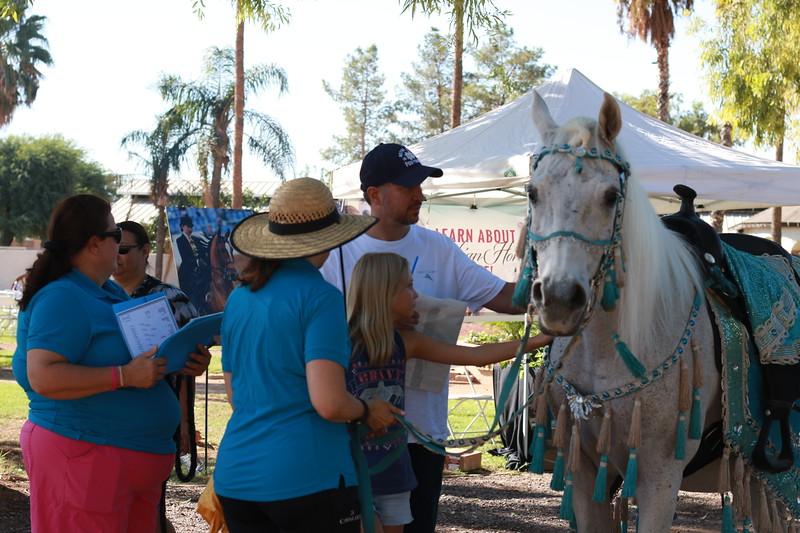 9-19_Meet an Arabian Horse