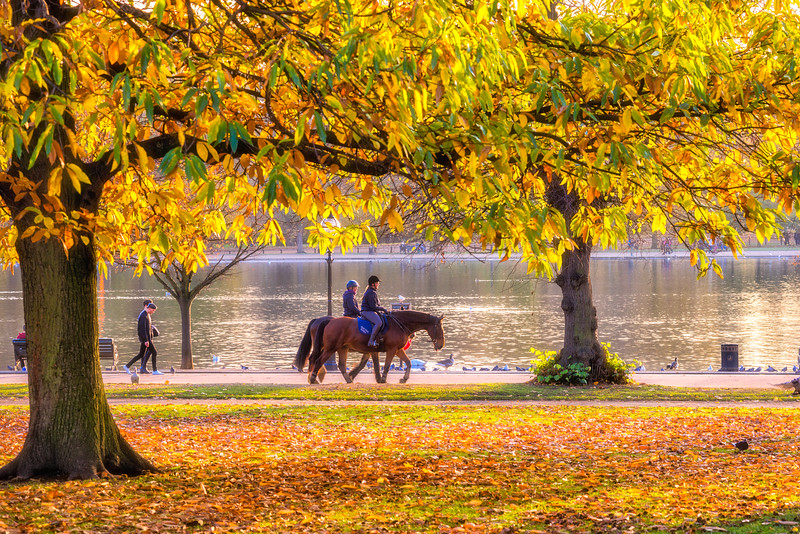 Hyde-Park-Horse-Riding.jpg