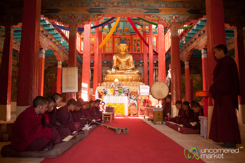 Novice Buddhist Monks at Hemis Monastery, Ladakh