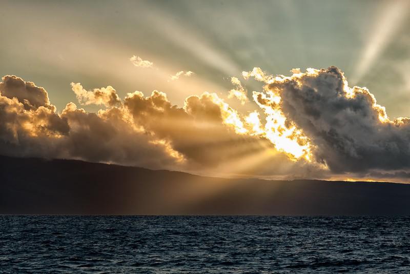 2015-02Feb01-Hawaii-201-Edit-Edit-Edit-Edit.jpg