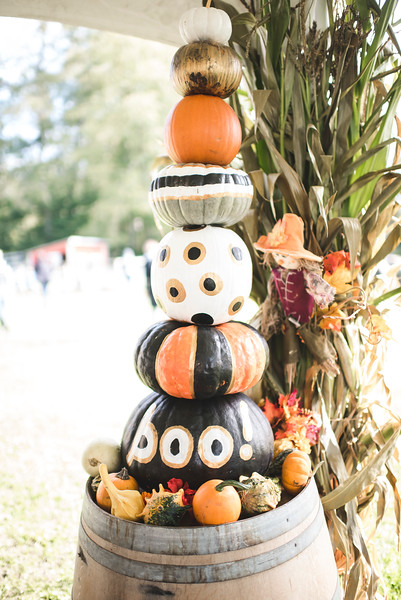 JLS_pumpkinpatch2018_038.jpg