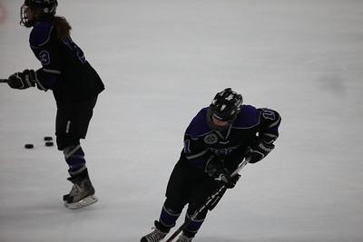 Buffalo Womens Hockey