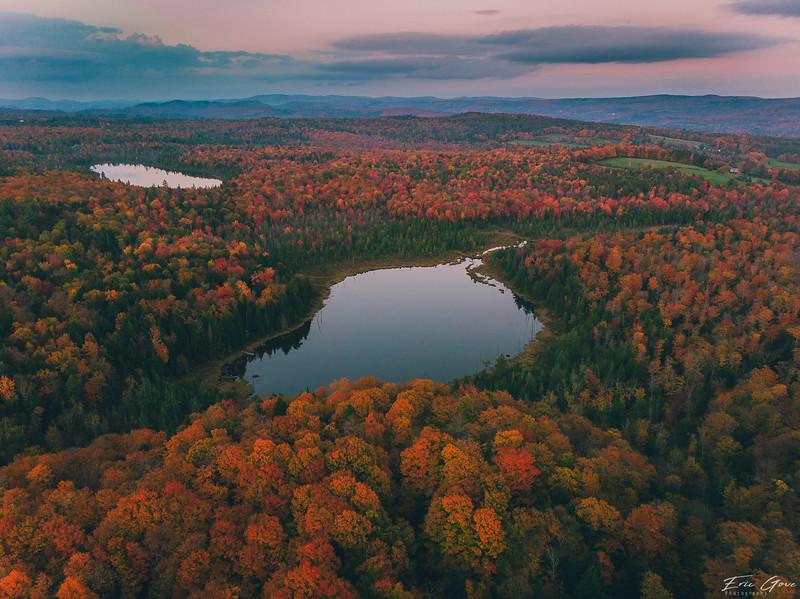 Fall Foliage 2018-12.jpg