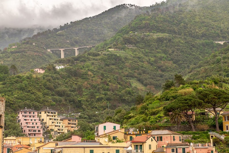 a green-covered mountainside with colorful houses at the base in Cinque Terre, Italy