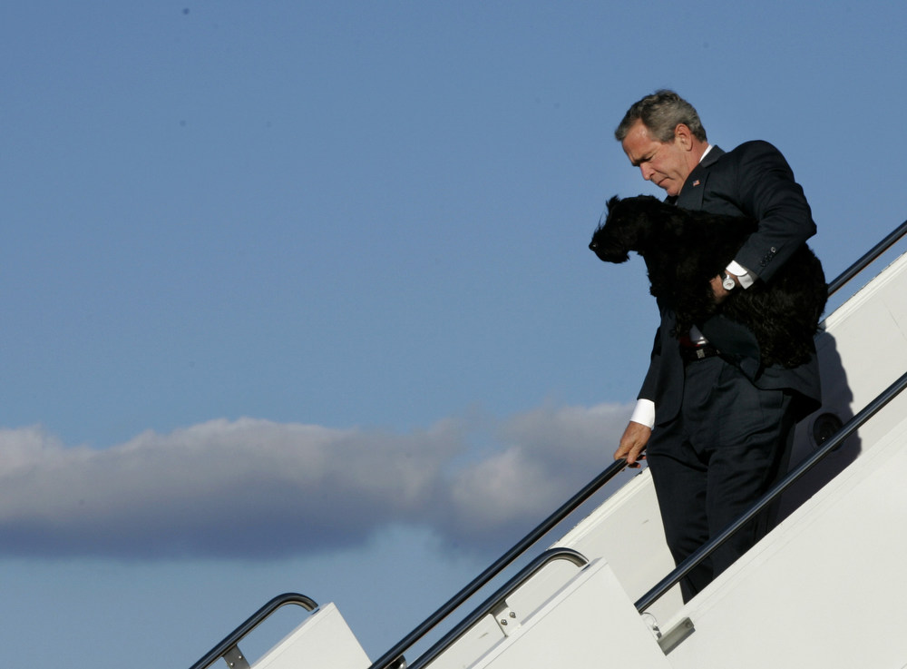 Description of . President Bush makes his way down the steps of Air Force One with his dog, Barney, Sunday, Nov. 28, 2004, in Andrews Air Force Base, Md.(AP Photo/Lawrence Jackson)