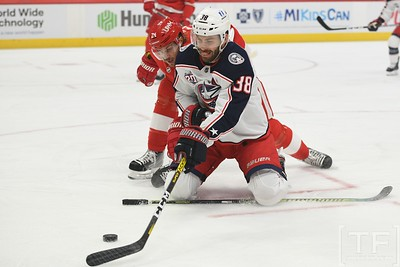 NHL: Columbus Blue Jackets At Detroit Red Wings1
