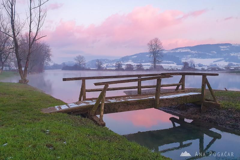 Winter in Kostanjevica