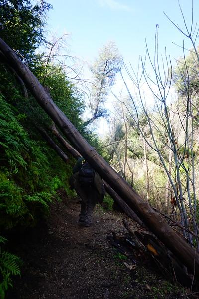 20160218052-Gabrielino Trail Scouting.JPG
