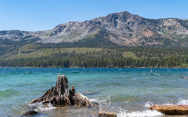 Lake Tahoe & Sacramento 2021