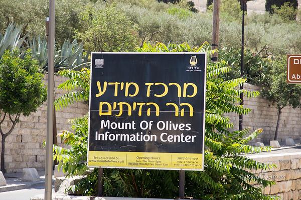Mount of Olives and Garden of Gethsemane