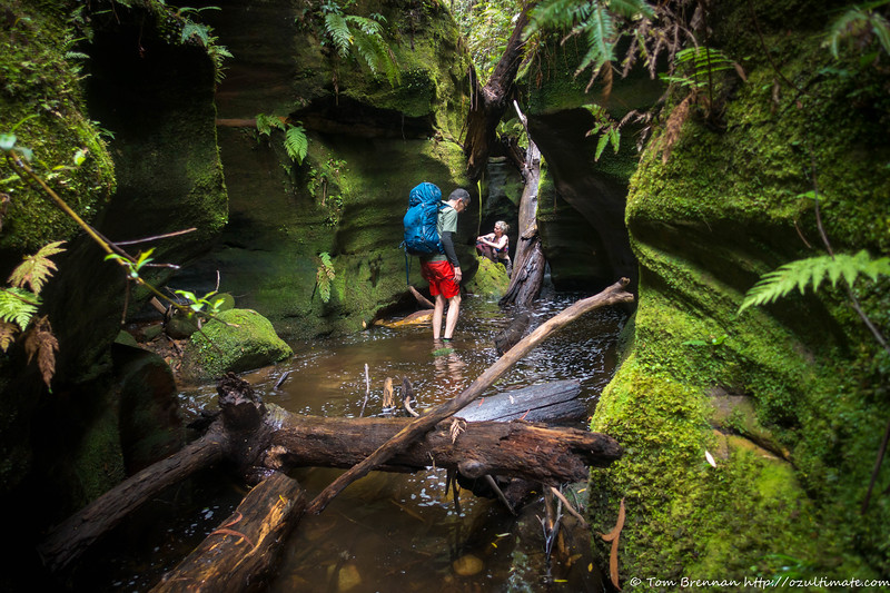 We try and exit up a side creek, which also quickly becomes a canyon!