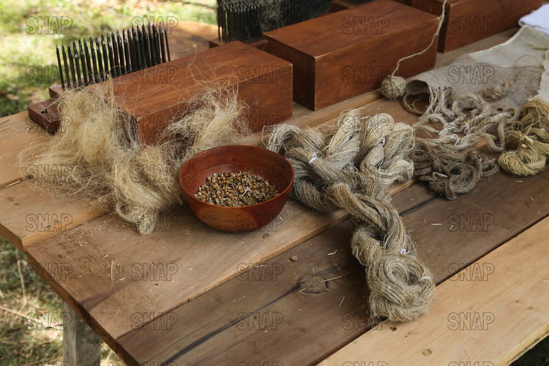 Linen Production From Flax