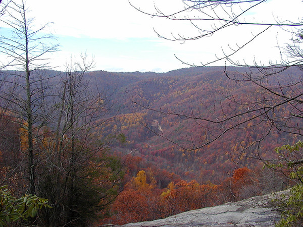 Crabtree Falls view from the top.jpg