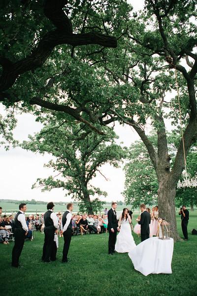 Outdoor summer wedding ceremony at McEachran Homestead Winery and vineyard in Caledonia, IL near Rockford.  Wedding photographer – Ryan Davis Photography – Rockford, Illinois.