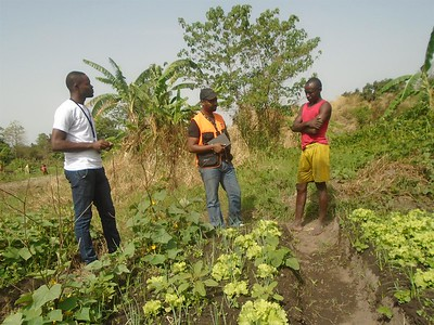 Group in the CAR benefiting from agricultural inputs