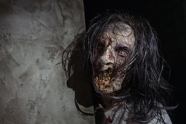 Binghamton Zombie Walk 2014 - Rot Jaw