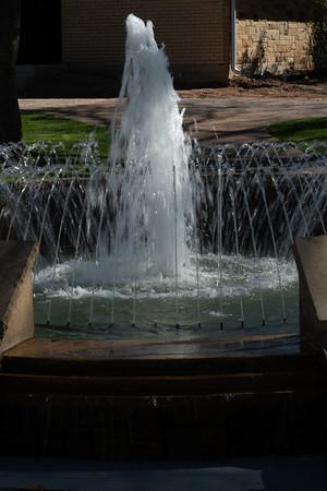 Grapevine Botanical Gardens - 3/16/19