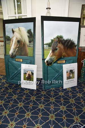 CTREE at SEBONACK Celebrating Horses Changing Lives  in Southampton on 8-23-18.  all photos by Rob Rich/SocietyAllure.com ©2018 robrich101@gmail.com 516-676-3939
