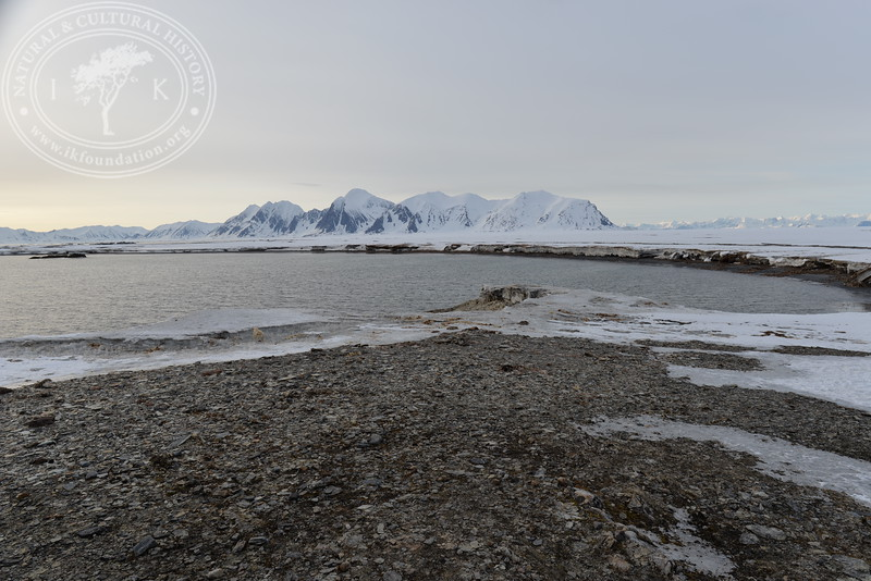 """The autonomous camera system has taken one hourly picture around the clock, from May 9th to July 12th in 2019, the last day when this Field Station camera registered two visiting polar bears, facing the camera in different directions. After this date, the camera continued to shoot until August 29th in 2019. All these pictures are published in a special gallery called """"Pictures   Havoc direction """"."""