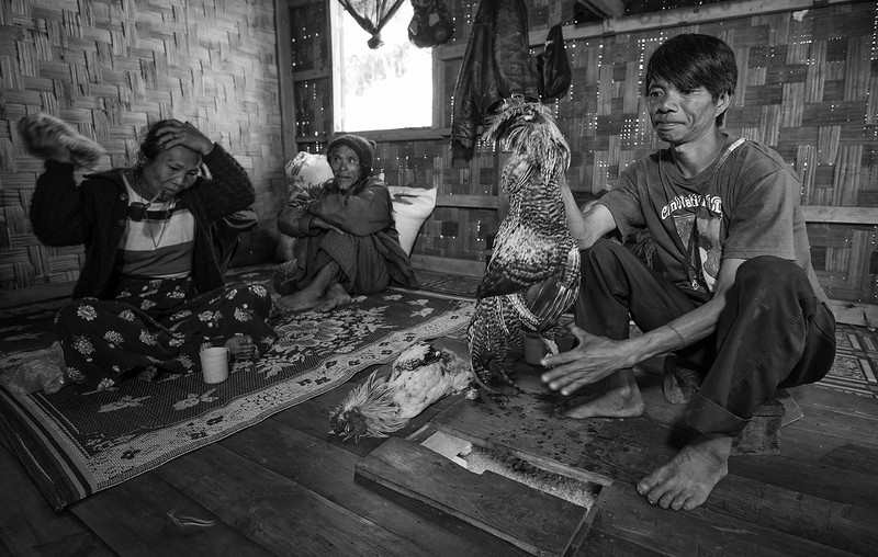 A shaman tells the future of a newly married couple by killing chickens, spitting on them and watching how they bleed.  Chin State, Myanmar, 2017.