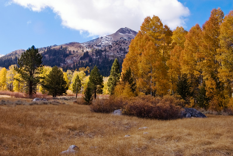 Fall in the Sierras 2