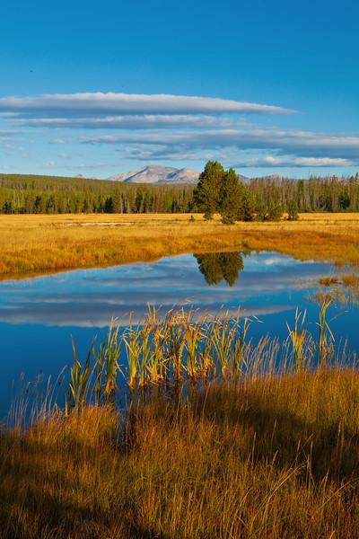 Yellowstone11 215 copy.jpg