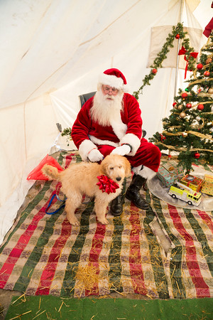 2019 Christmas Parade Santa Pictures