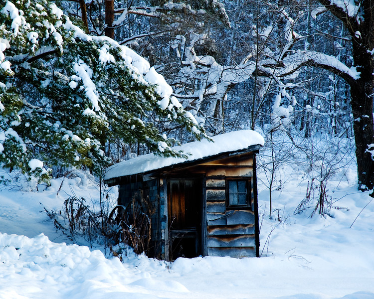 Winter shed 20x16.jpg