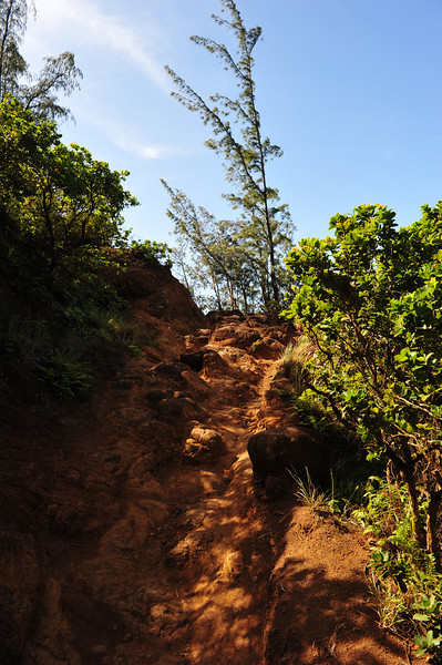 The long and treacherous path along the northern coast of Kaua'i  (C) 2009 Brian Neal