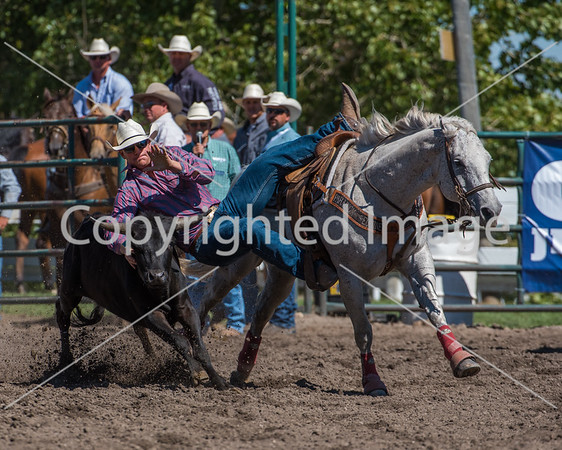 2016 Pincher Creek Sat perf