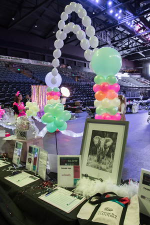 The Scene - Loveland Chamber - Annual Dinner 2019 - A Night to Glow - Budweiser Event Center - 01/25/2019