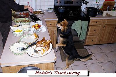 Maddie's Thanksgiving 2013
