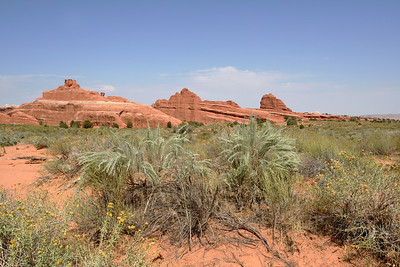 Arches and Other Things Out West