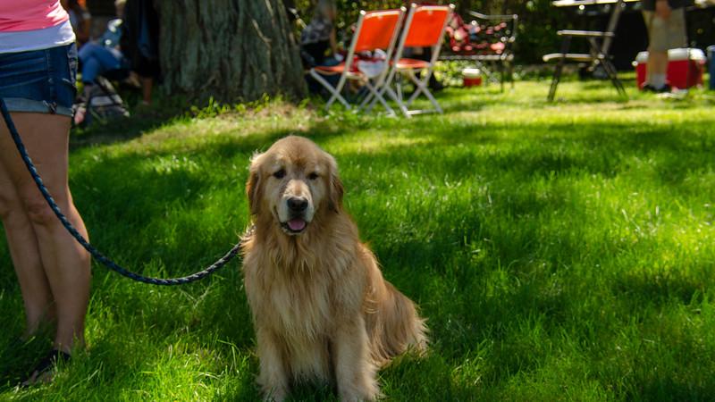 PuppyParty18-371.jpg